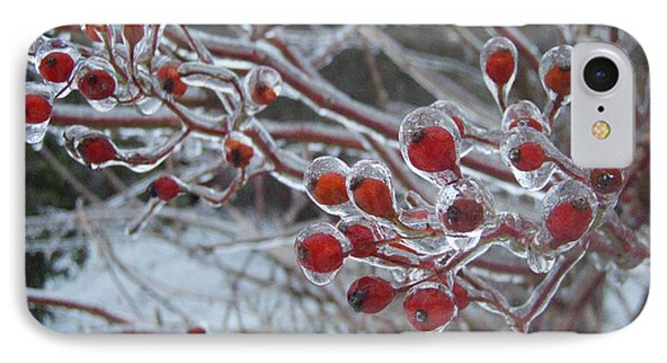 Red Ice Berries Phone Case by Kristine Nora