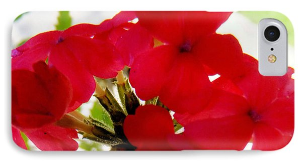 IPhone Case featuring the photograph Red In The Garden by Carolyn Repka