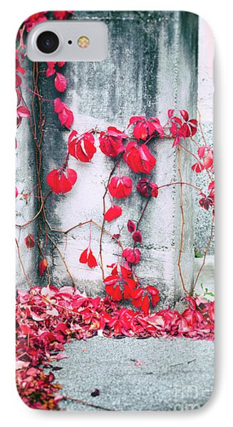 IPhone 7 Case featuring the photograph Red Ivy Leaves by Silvia Ganora