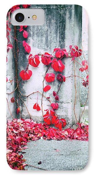 IPhone Case featuring the photograph Red Ivy Leaves by Silvia Ganora