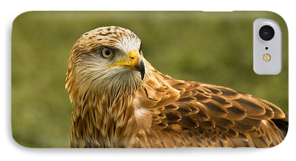 IPhone Case featuring the photograph Red Kite by Scott Carruthers