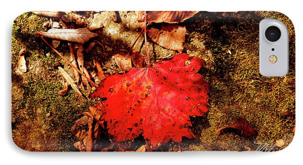 IPhone Case featuring the photograph Red Leaf by Meta Gatschenberger