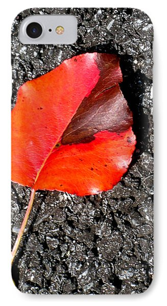 Red Leaf On Asphalt Phone Case by Douglas Barnett