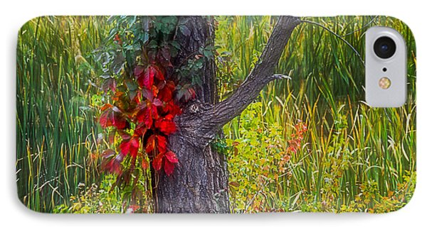 Red Leaves And Vines On Tree In Forest Of Reeds IPhone Case by John Brink