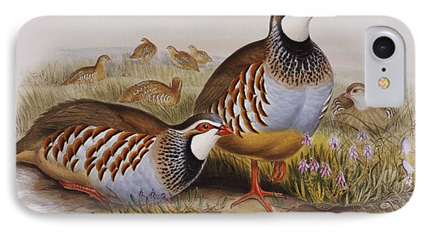 Red-legged Partridges IPhone 7 Case by John Gould