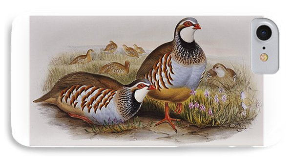 Red-legged Partridges IPhone Case by John Gould