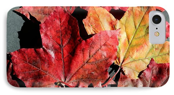 Red Maple Leaves Digital Painting IPhone Case by Barbara Griffin