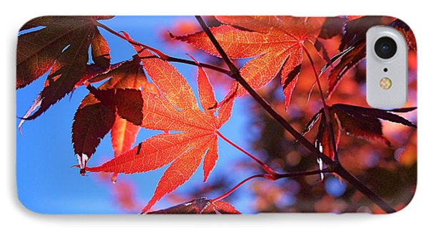 Red Maple Phone Case by Rona Black