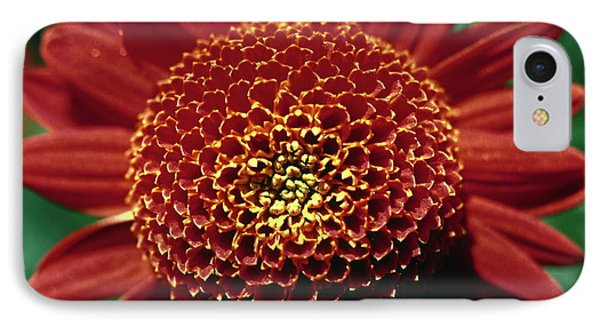 IPhone Case featuring the photograph Red Mum Center by Sally Weigand