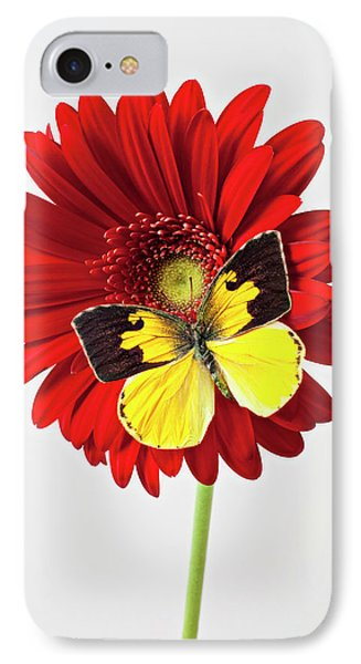 Red Mum With Dogface Butterfly Phone Case by Garry Gay