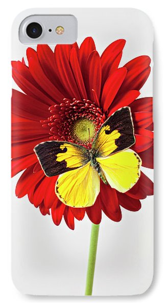 Red Mum With Dogface Butterfly IPhone Case by Garry Gay