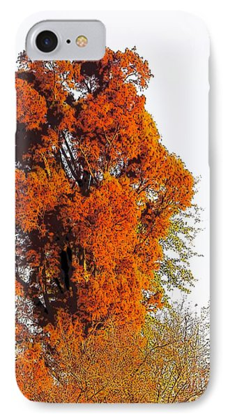Red-orange Fall Tree IPhone Case by Craig Walters
