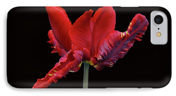Red Parrot Tulip Phone Case by Sandy Keeton
