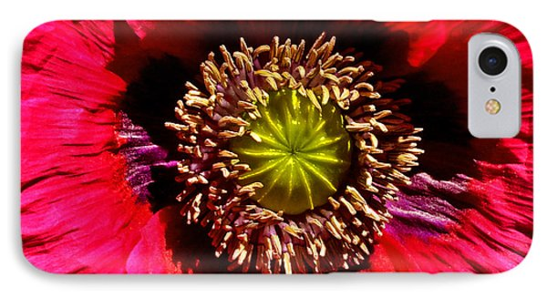 Red Poppy 014 IPhone Case by George Bostian