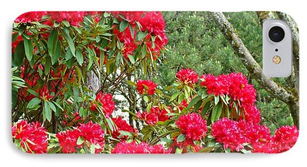 Red Rhododendron Garden Art Prints Rhodies Landscape Baslee Troutman Phone Case by Baslee Troutman