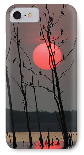 Red Rise Cormorants IPhone Case by Roger Becker