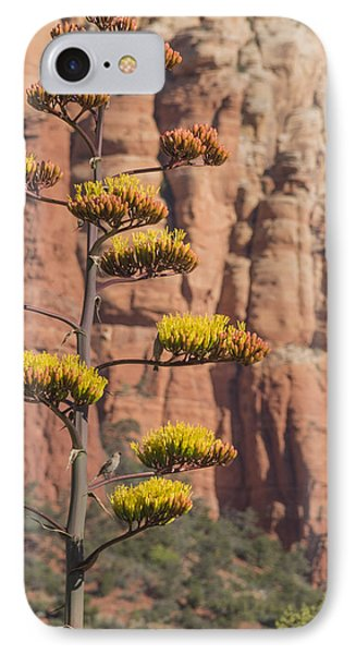 Red Rocks And Century Plant IPhone Case