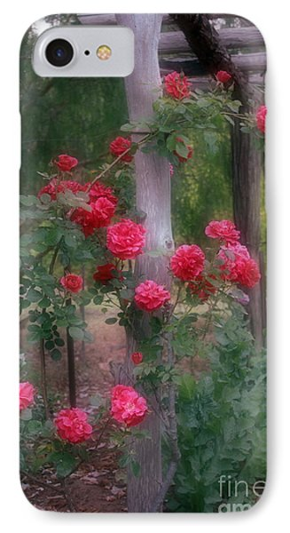 Red Rose Dream IPhone Case by Elaine Teague