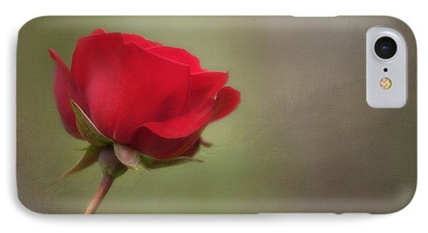 Red Rose IPhone Case by Jacqui Boonstra