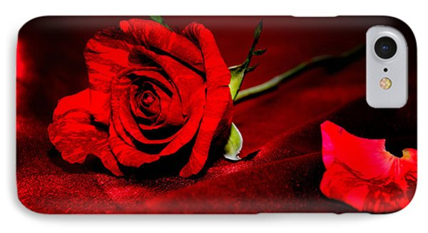 Red Rose  IPhone Case by Serena King