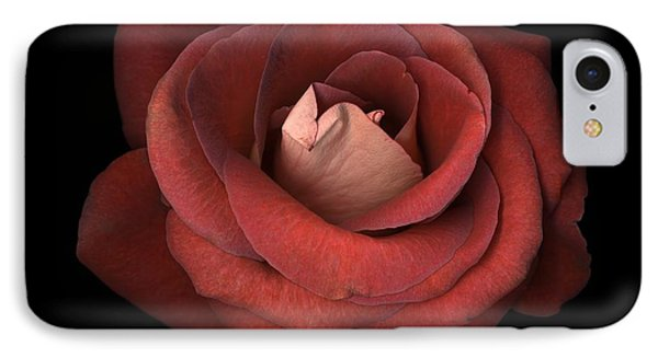 Red Rose IPhone Case by Test