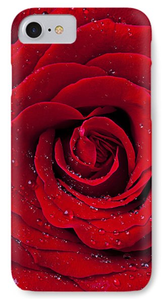 Red Rose With Dew IPhone Case by Garry Gay