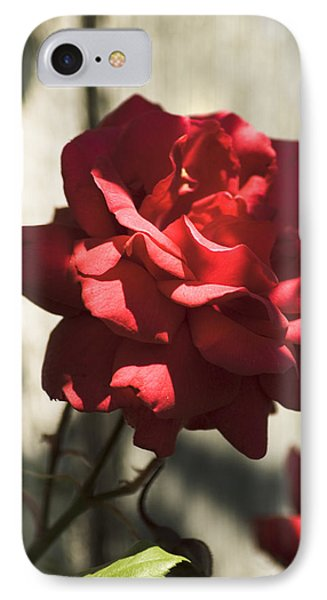 IPhone 7 Case featuring the photograph Red Rose by Yulia Kazansky