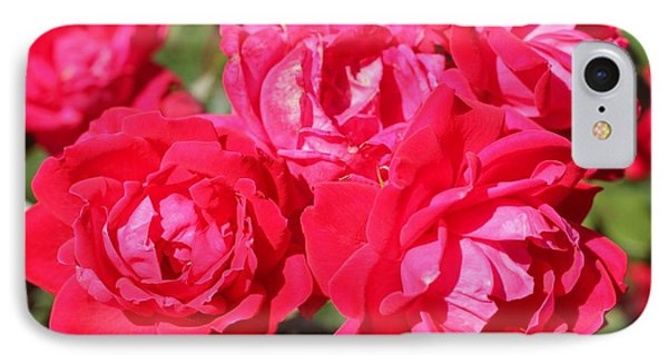 Red Roses 1 IPhone Case