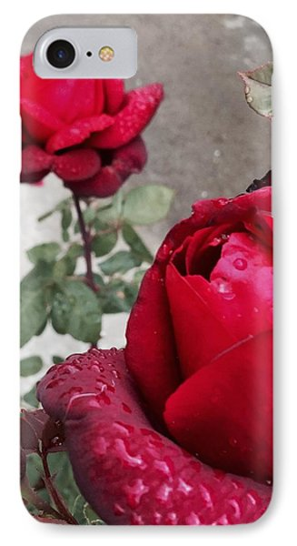 Red Roses Phone Case by Beverly Johnson
