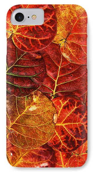 Red Sea Grapes By Sharon Cummings IPhone Case