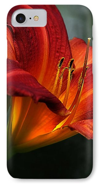 Red Seduction 2 IPhone Case by John Poon