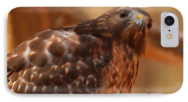 Red Shouldered Hawk 1  IPhone Case by Chris Flees