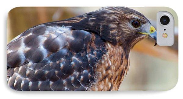 Red Shouldered Hawk 2 IPhone Case by Chris Flees