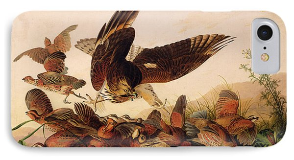 Red Shouldered Hawk Attacking Bobwhite Partridge IPhone 7 Case by John James Audubon