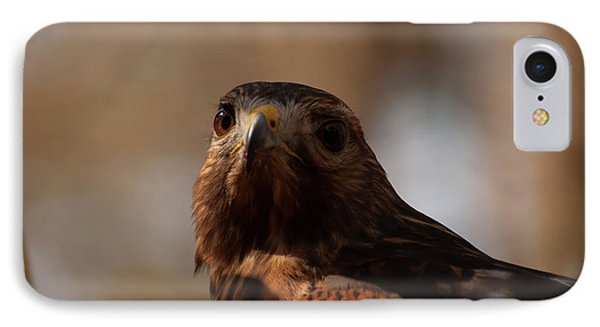 Red Shouldered Hawk Close Up IPhone Case by Chris Flees