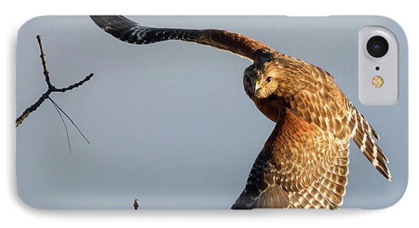 Red Shoulered Hawk In Flight Square IPhone Case