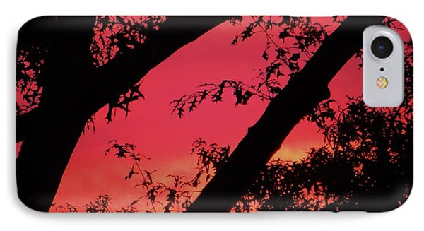 IPhone Case featuring the photograph Red Sky by Susan Carella