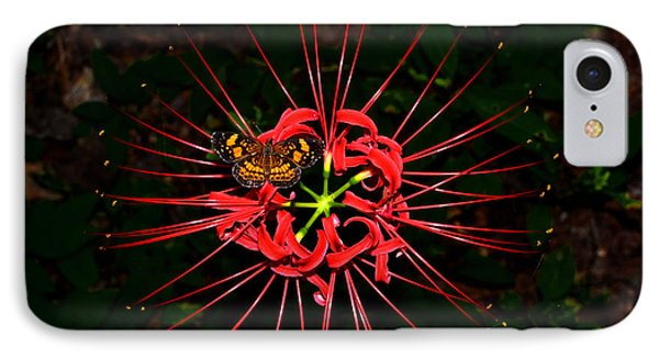 Red Spider Lily And Painted Lady Butterfly 001 IPhone Case by George Bostian