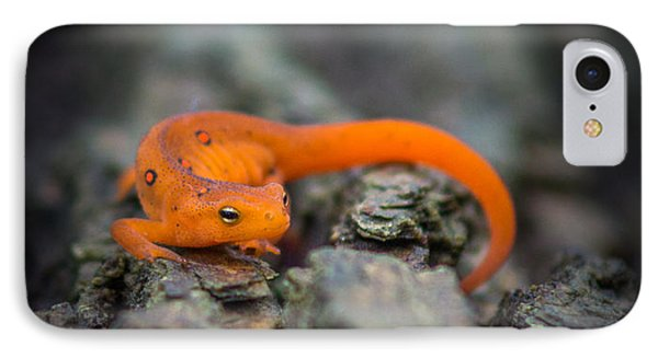 IPhone Case featuring the photograph Red Spotted Newt by Chris Bordeleau