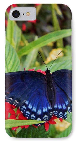 Red Spotted Purple Butterfly IPhone Case by Warren Thompson