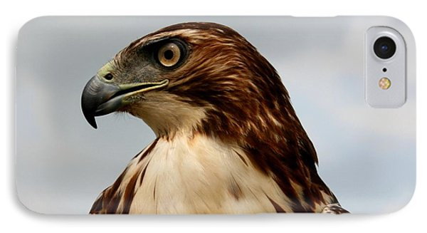 IPhone Case featuring the photograph Red Tail Hawk 1 by David Dunham