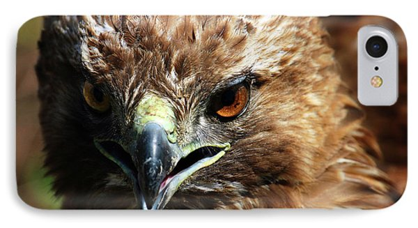 IPhone Case featuring the photograph Red-tail Hawk Portrait by Anthony Jones
