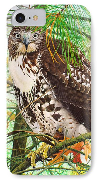 Red Tail Hawk, Thistle IPhone Case by Ken Everett