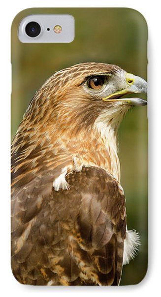 IPhone Case featuring the photograph Red-tailed Hawk Close-up by Ann Bridges