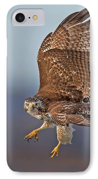 Red-tailed Hawk In Flight IPhone Case by CR  Courson
