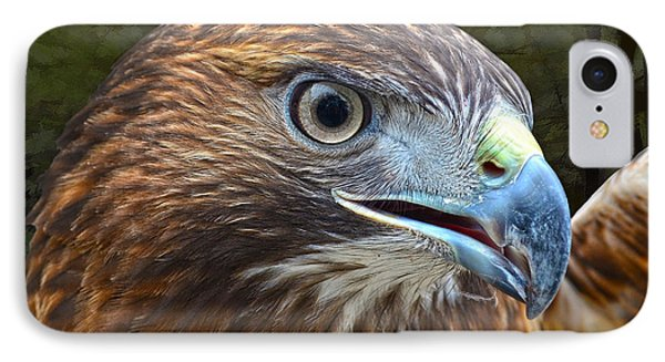 Red-tailed Hawk Portrait IPhone Case by Sandi OReilly