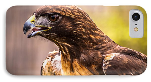 Red Tailed Hawk Profile IPhone Case