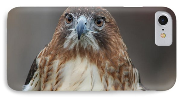 IPhone Case featuring the photograph Red Tailed Hawk by Richard Bryce and Family