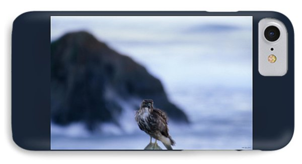 Red-tailed Hawk - Westport Union Landing State Beach IPhone Case by Soli Deo Gloria Wilderness And Wildlife Photography
