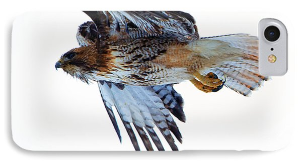 Red-tailed Hawk Winter Flight IPhone Case by Mike Dawson